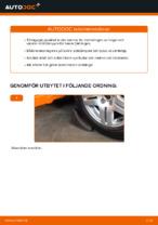 Hur man byter ut bakre stötdämpares fästen på Volkswagen Golf IV (1J)