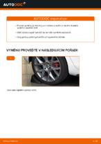 Jak vyměnit ložisko zadního tlumiče na autě VOLKSWAGEN GOLF VI (5K1)