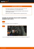 Wie Bremsbackensatz für Trommelbremse hinten und vorne beim FIAT PUNTO (188) wechseln - Handbuch online