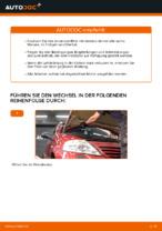 PDF Wechsel Anleitung: Pollenfilter CITROЁN