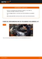 PDF handleiding voor vervanging: Remblokset RENAULT achter en vóór