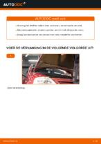 CITROËN - reparatie handleidingen met illustraties
