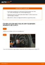 Online-Anleitung zum Federbeinlager-Austausch am FIAT PUNTO (188) kostenlos