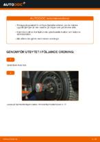 BILSTEIN 12-238088 för CADILLAC, FIAT, OPEL, SAAB, VAUXHALL | PDF instruktioner för utbyte