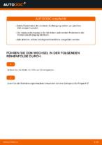 Wie Federbein VW GOLF auswechseln und einstellen: PDF-Anleitung