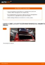 Cambio Muelle neumatico maletero CITROËN bricolaje - manual pdf en línea