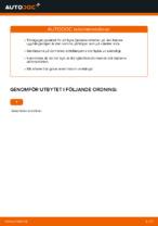 Byta Fjädersäte bak och fram VW GOLF: online guide