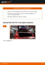 När byta Gasfjäder bakruta CITROËN C3 I (FC_): pdf handledning