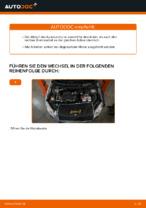 Auswechseln Bremszange NISSAN QASHQAI: PDF kostenlos
