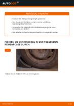 Wie Axialgelenk Spurstange beim CITROËN C3 I (FC_) wechseln - Handbuch online