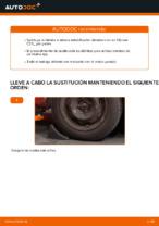 Instrucciones gratuitas en línea sobre cómo renovar Tirante barra estabilizadora CITROËN C3 I (FC_)