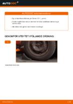 MONROE L28607 för CITROËN, DS, PEUGEOT | PDF instruktioner för utbyte