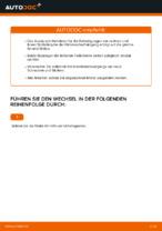 VW PASSAT Variant (3B6) Halter Bremssattel: Online-Handbuch zum Selbstwechsel