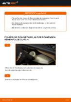Wie Bremsklötze CITROËN C3 tauschen und einstellen: PDF-Tutorial