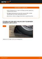 VW Stoßdämpfer Satz Gasdruck selber austauschen - Online-Bedienungsanleitung PDF