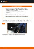 Achteras Rubbers veranderen MERCEDES-BENZ A-CLASS: werkplaatshandboek
