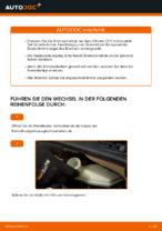 Bremsscheiben erneuern CITROËN C3: Werkstatthandbücher
