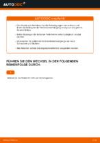 Nützliche Fahrzeug-Reparaturanleitung für vorderachse und hinterachse Domlager VW
