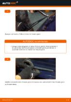Comment remplacer les essuie-glaces arrière sur une Citroen C3 1