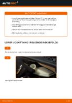 RIDEX 82B0234 til C3 I Hatchback (FC_, FN_) | PDF udskiftnings guide