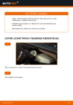 Hvordan skifter man og justere Bremseklods CITROËN C3: pdf manual