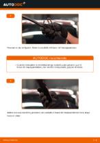 Cómo cambiar las escobillas delanteras de limpiaparabrisas en Citroen C3 1