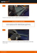 Cómo cambiar las escobillas traseras de limpiaparabrisas en Citroen C3 1