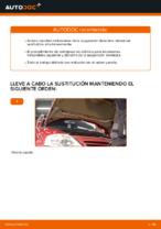 Cómo cambiar los resortes de suspensión delantera en Citroen C3 1