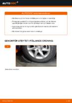 Magnum Technology A7M007MT för MERCEDES-BENZ | PDF instruktioner för utbyte