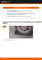 Cómo cambiar y ajustar Amortiguador CITROËN C3: tutorial pdf