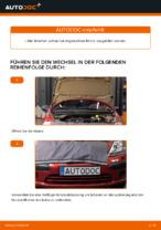 CITROËN-Reparaturhandbuch mit Bildern