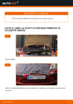 Manual del propietario CITROËN pdf