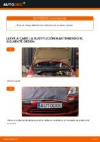 Cambio Correa de servicio CITROËN bricolaje - manual pdf en línea