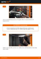 Guía de reparación paso a paso para CITROËN XSARA