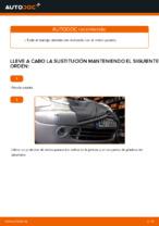 Recomendaciones de mecánicos de automóviles para reemplazar Discos de Freno en un CITROËN Citroen Xsara Picasso 1.6 HDi