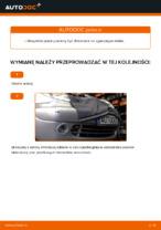 Instrukcja obsługi samochodu CITROËN pdf