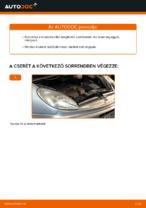 Online ingyenes kézikönyv - Üzemanyagszűrő CITROËN XSARA PICASSO (N68) csere
