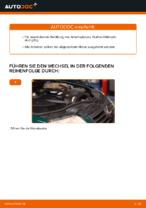 Wie Sie den Kraftstofffilter am VOLKSWAGEN PASSAT B5 (3BG, 3B6) ersetzen