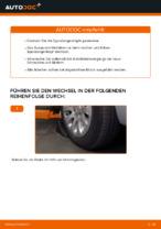CITROËN XSARA PICASSO (N68) Bremsbacken für Trommelbremse: Online-Tutorial zum selber Austauschen