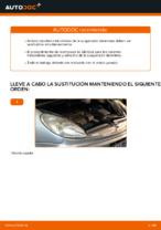 PDF manual sobre mantenimiento XSARA