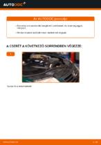 Mikor cseréljünk Üzemanyagszűrő VW PASSAT Variant (3B5): pdf kézikönyv