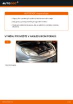 Online průvodce zdarma jak obnovit Olejovy filtr CITROËN XSARA PICASSO (N68)