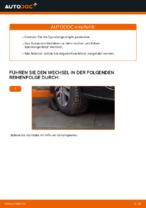 VW TOURAN (1T1, 1T2) Bremsscheibe: Online-Handbuch zum Selbstwechsel