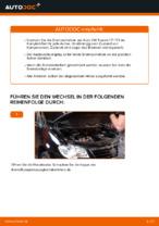 QUARO QD1458 für TOURAN (1T1, 1T2) | PDF Handbuch zum Wechsel