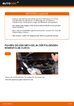 Wie Bremsscheibe VW TOURAN auswechseln und einstellen: PDF-Anleitung