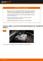 Cambio Juego de frenos de disco traseras y delanteras CITROËN bricolaje - manual pdf en línea