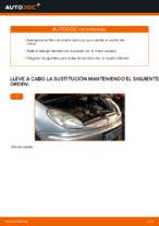 Cambio Filtro de Aceite CITROËN bricolaje - manual pdf en línea