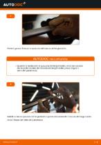 Montaggio Tergilunotto VW TOURAN (1T1, 1T2) - video gratuito