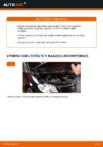 Vymeniť Ložisko tlmiča na aute VW TOURAN (1T1, 1T2) - tipy a triky