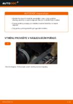 Jak vyměnit a regulovat Brzdové Destičky VW TOURAN: průvodce pdf